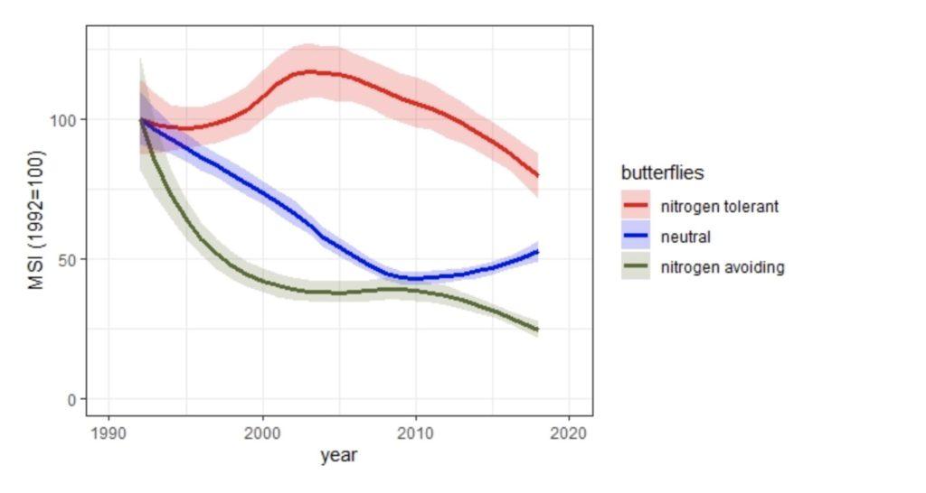 Butterflies show pollution with nitrogen