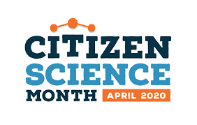 Citizen Science Month in the USA. An example to Europe?