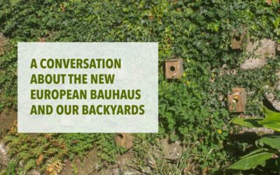 A CONVERSATION ABOUT THE NEW EUROPEAN BAUHAUS AND OUR BACKYARDS